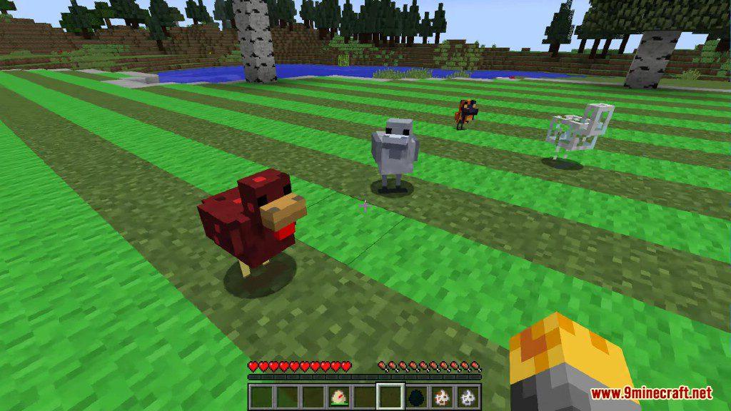 Chickens Mod Screenshots 7