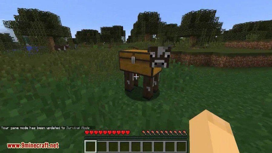 Chest Cow Mod 4