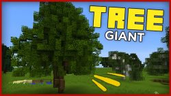 Giant Trees Command Block