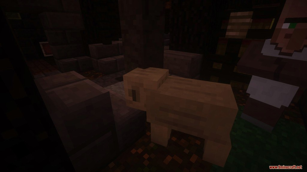 Echelon Resource Pack Screenshots 5