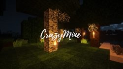 CrazyMine Resource Pack