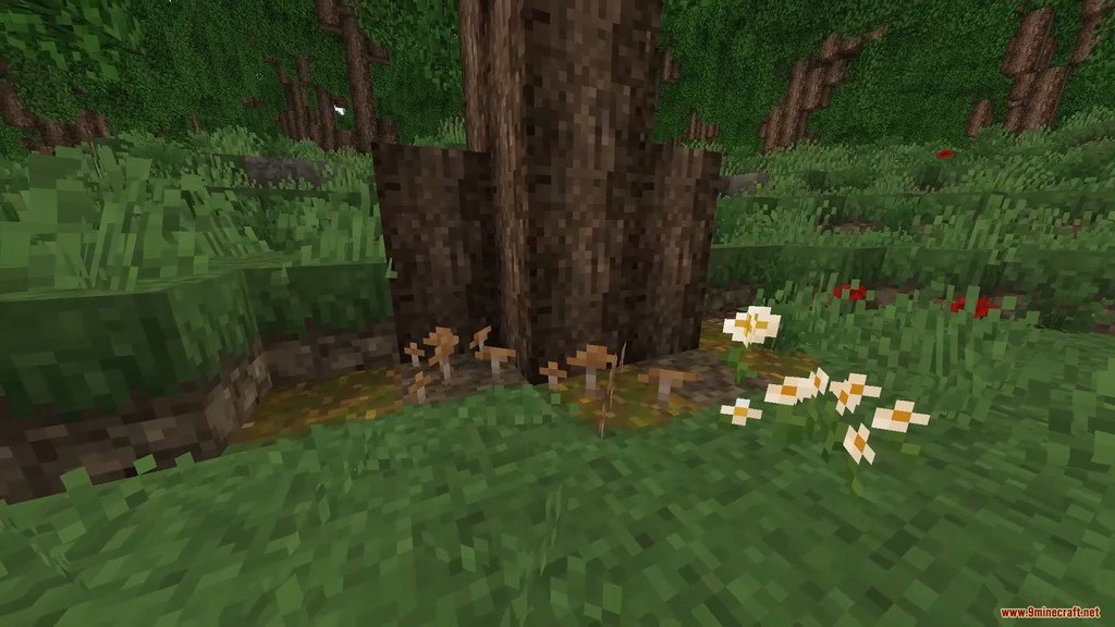Beyond the Lands Resource Pack Screenshots 2
