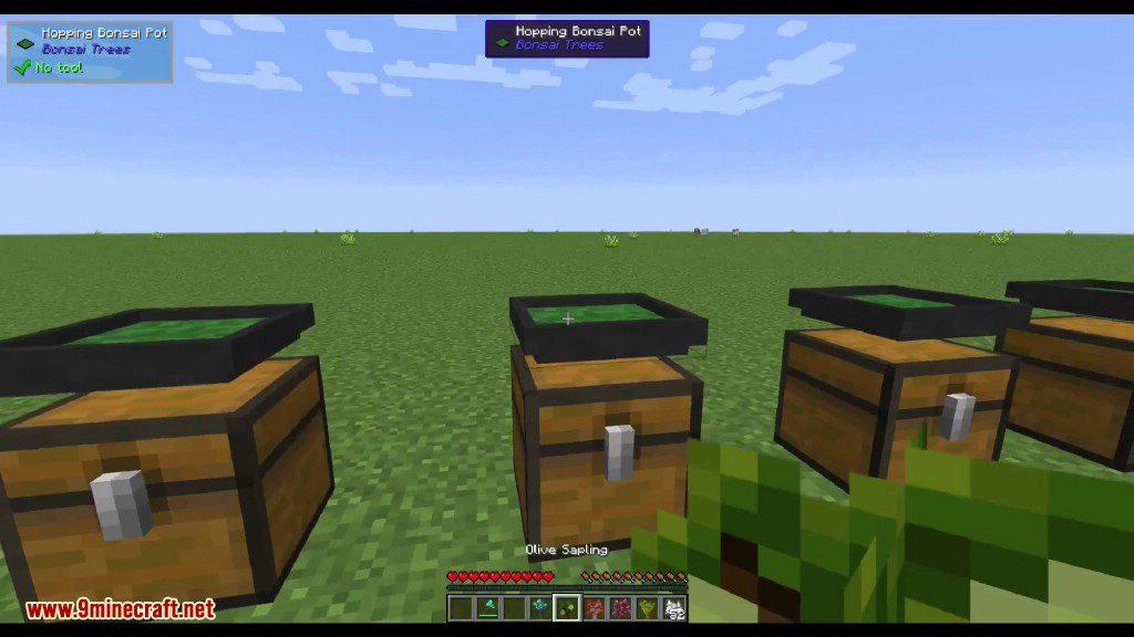 Bonsai Trees Mod Screenshots 8 (2)