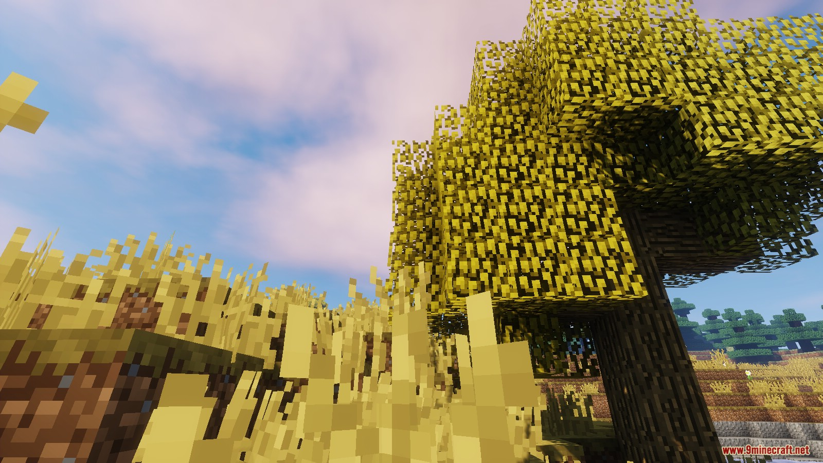 Land of the Sun Resource Pack Screenshots 2
