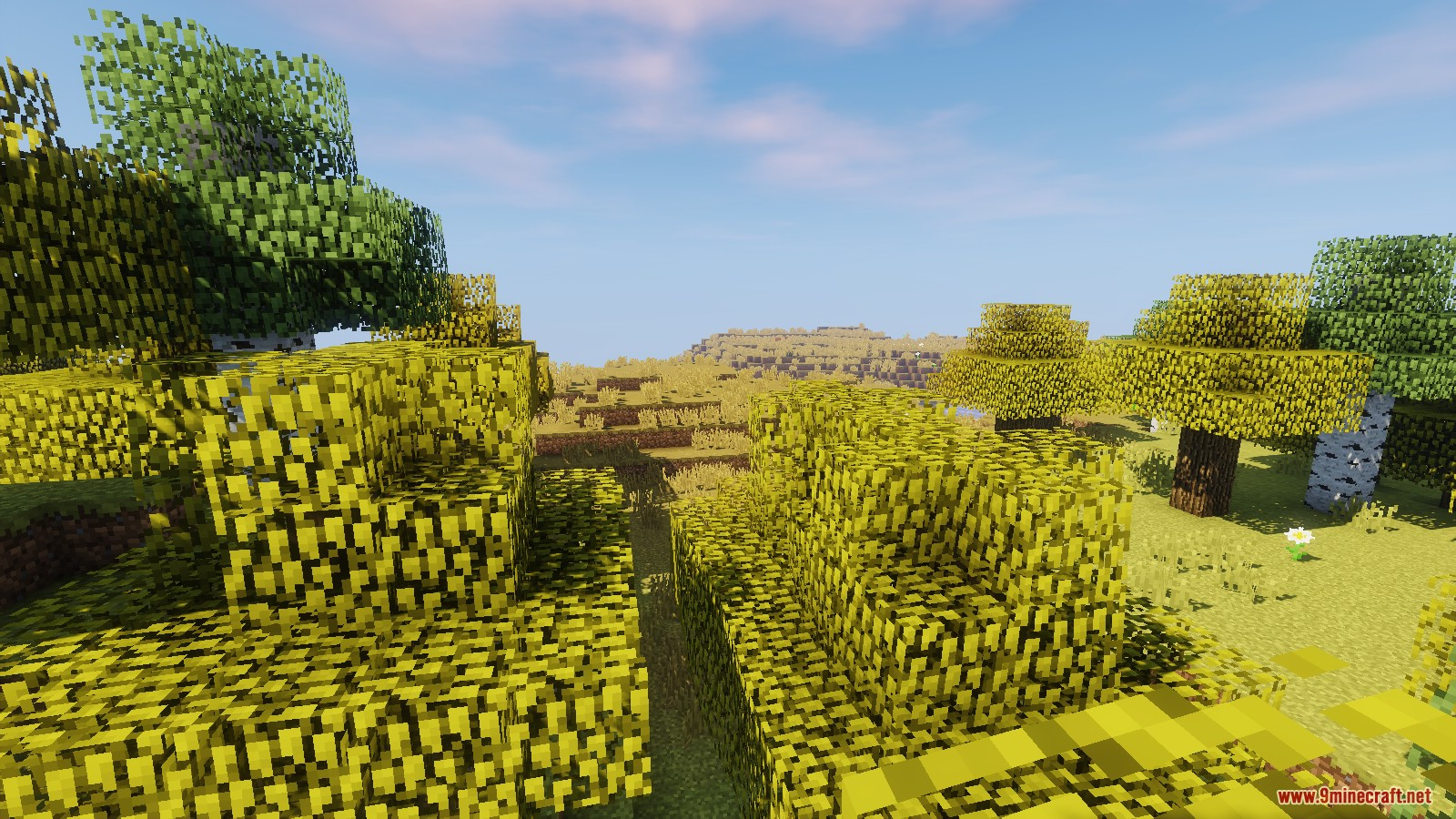 Land of the Sun Resource Pack Screenshots 5