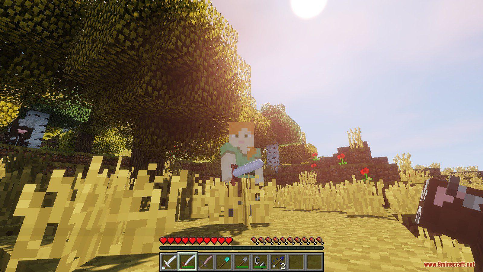 Land of the Sun Resource Pack Screenshots 7