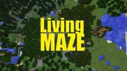 Living Maze Map Thumbnail