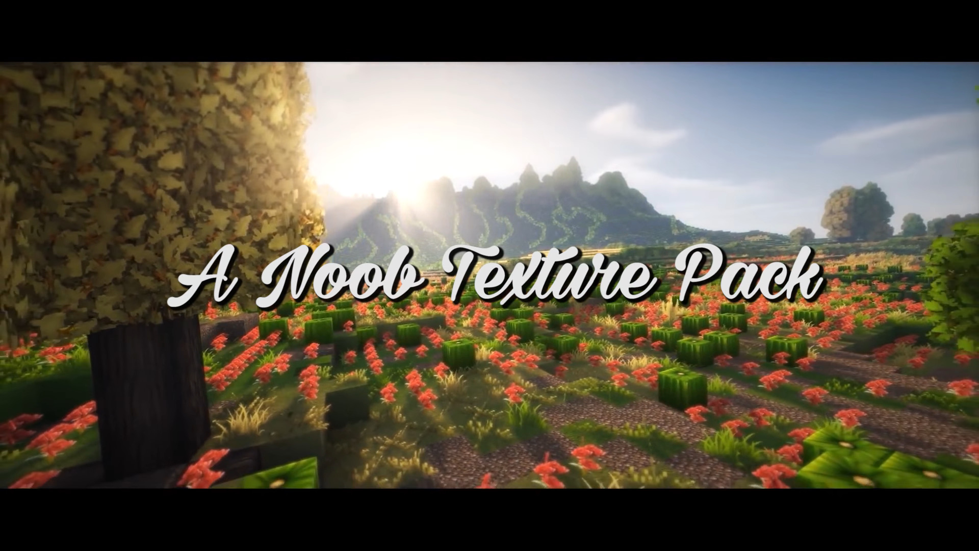 Noob Resource Pack