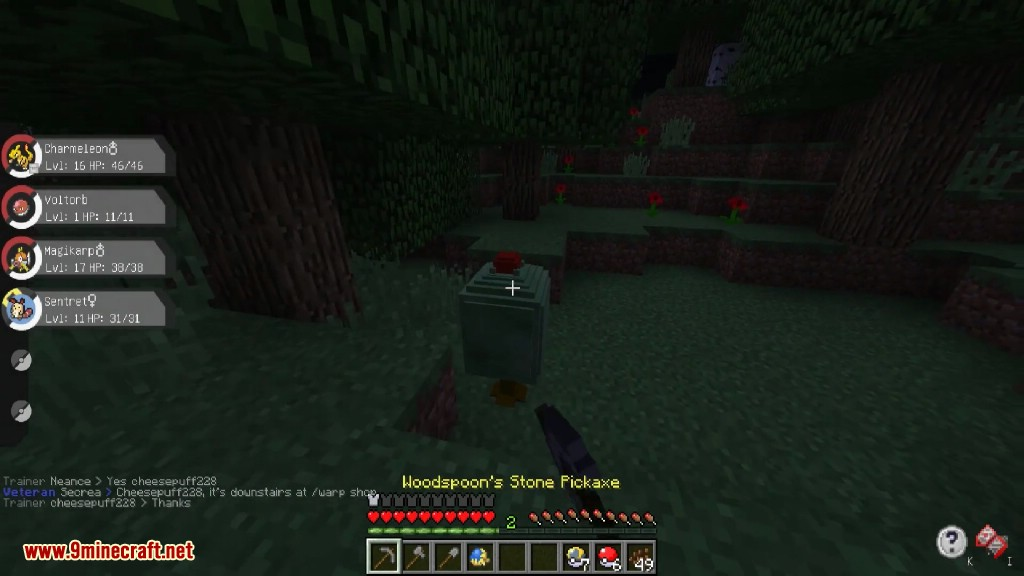 Pixelmon Generations Mod Screenshots 38