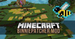 Binnie Patcher Mod