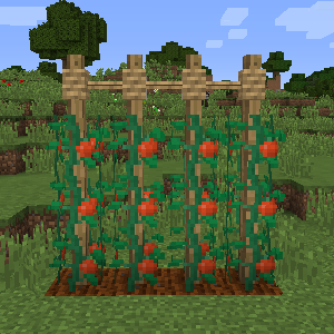 Rustic Mod Features 29