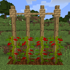 Rustic Mod Features 30