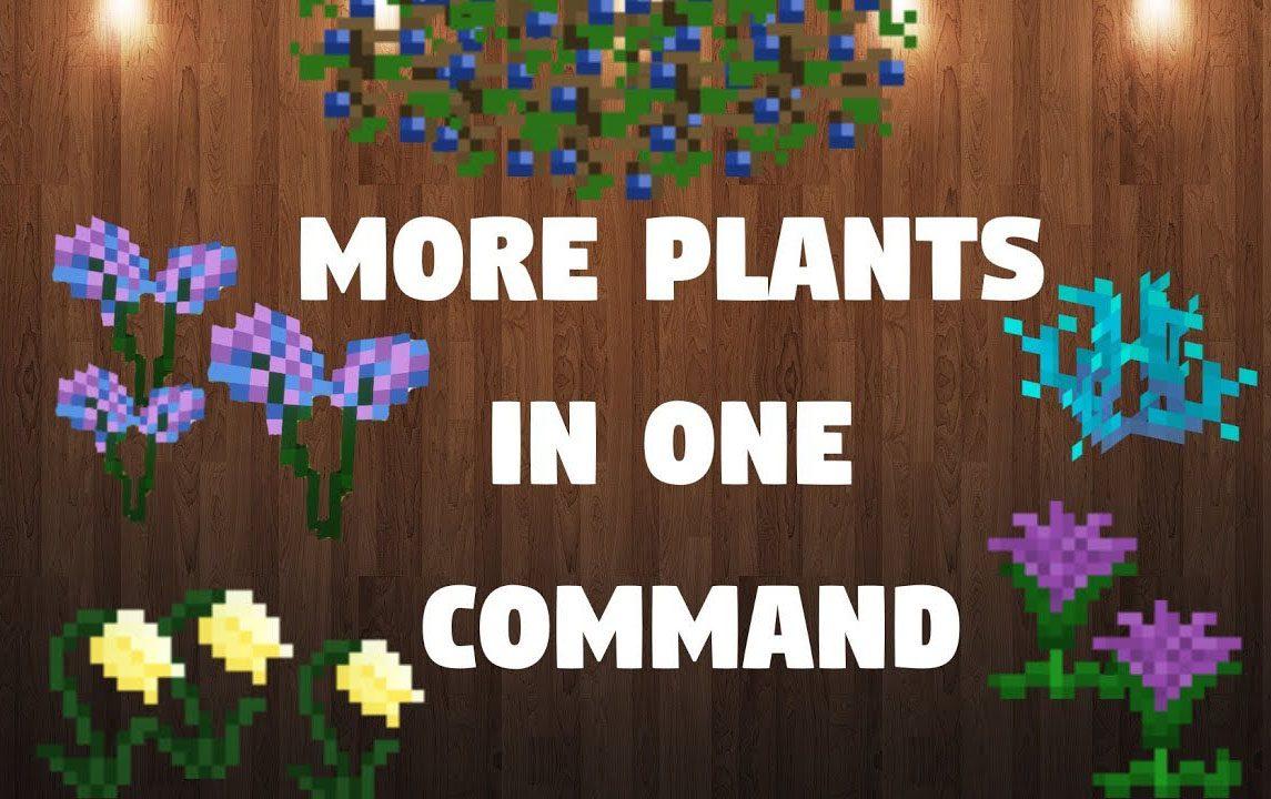 More Plants Command Block