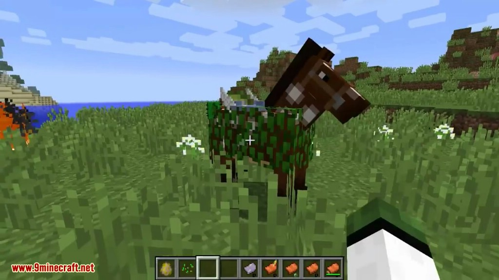 Horse Tweaks Mod Screenshots 12
