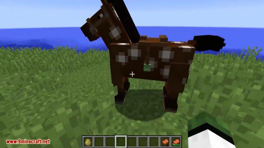 Horse Tweaks Mod Screenshots 6