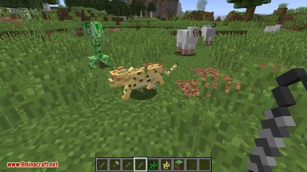 Entity Spring Mod Screenshots 5