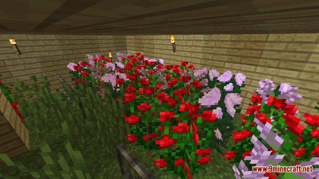 Find the button- Garden Map Screenshots 10