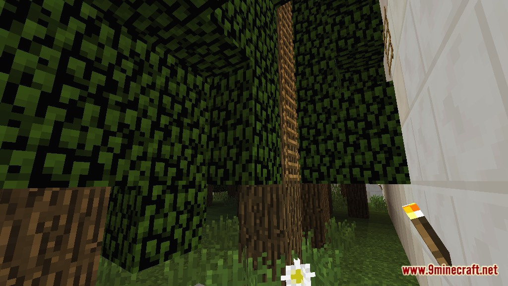 Finds the Button 15 Levels Map Screenshots 6