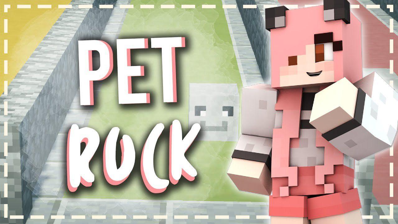Petrock Mod 1.15.2/1.14.4 (New Pet, Follows You ...