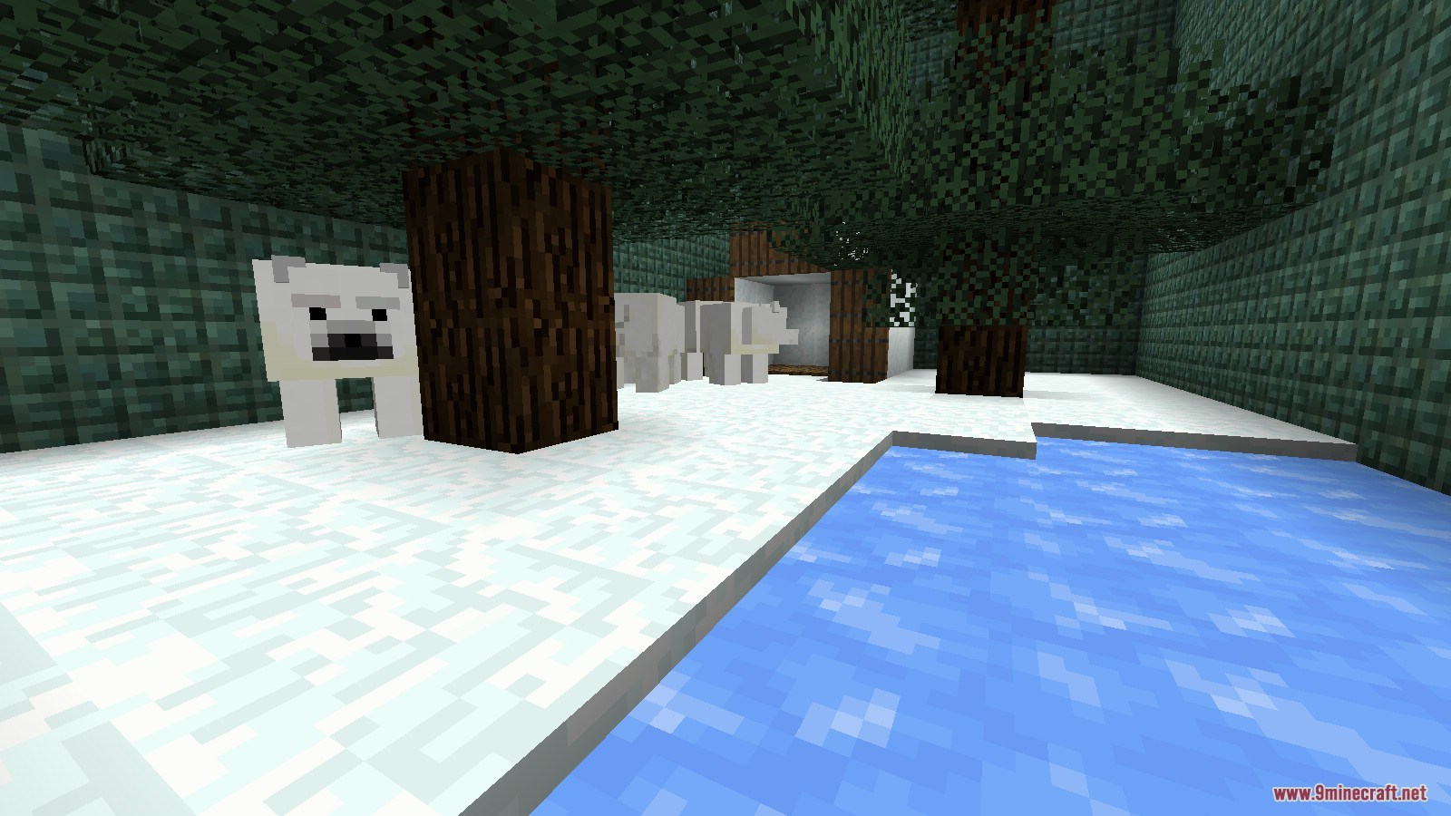 The Aquatic Update Map Screenshots (9)