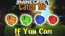 Catch Me If You Can Mod