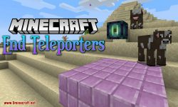 End Teleporters mod for minecraft logo
