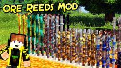 Ore Reeds Mod