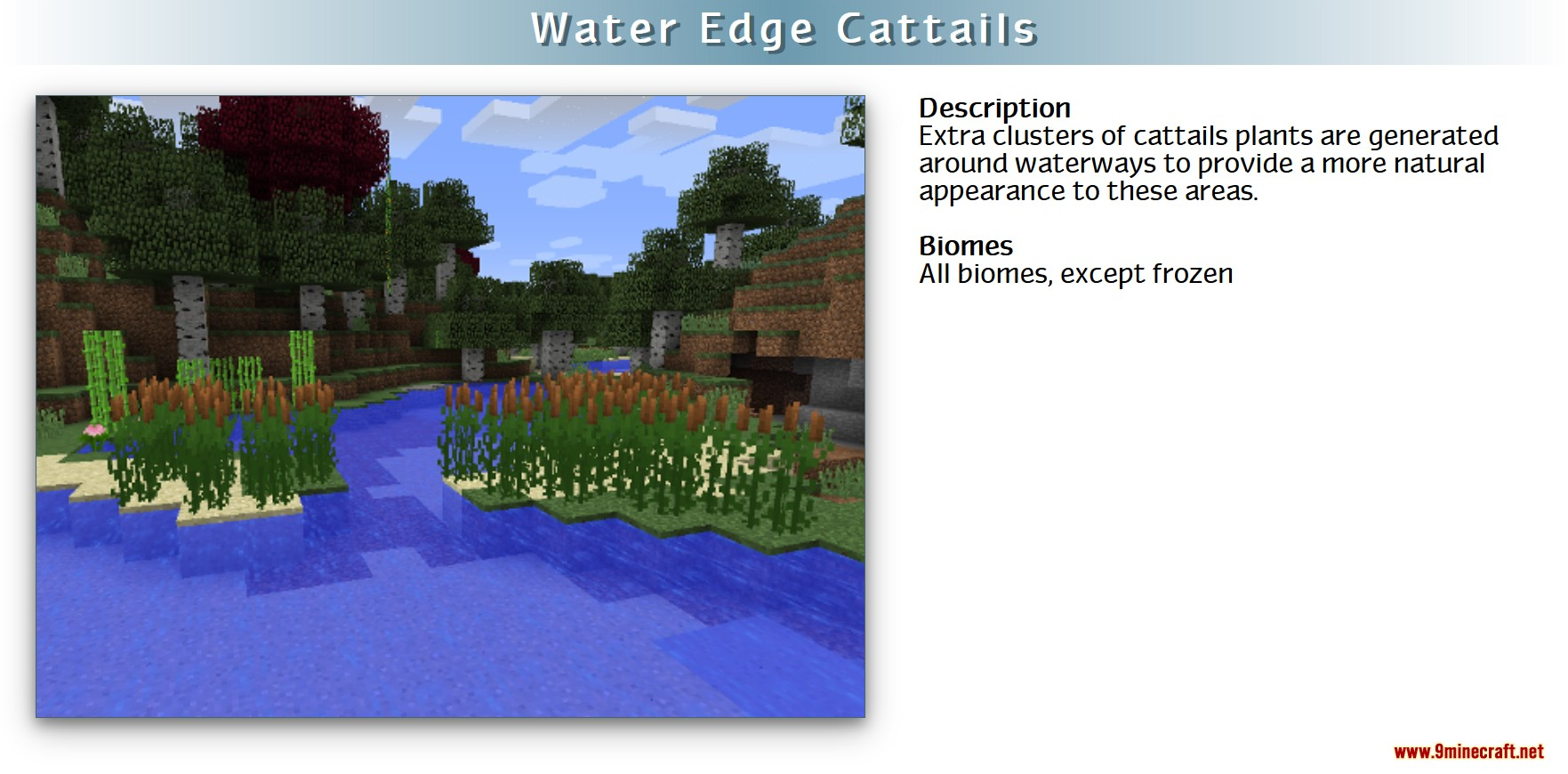 RealWorld Mod Screenshots 14