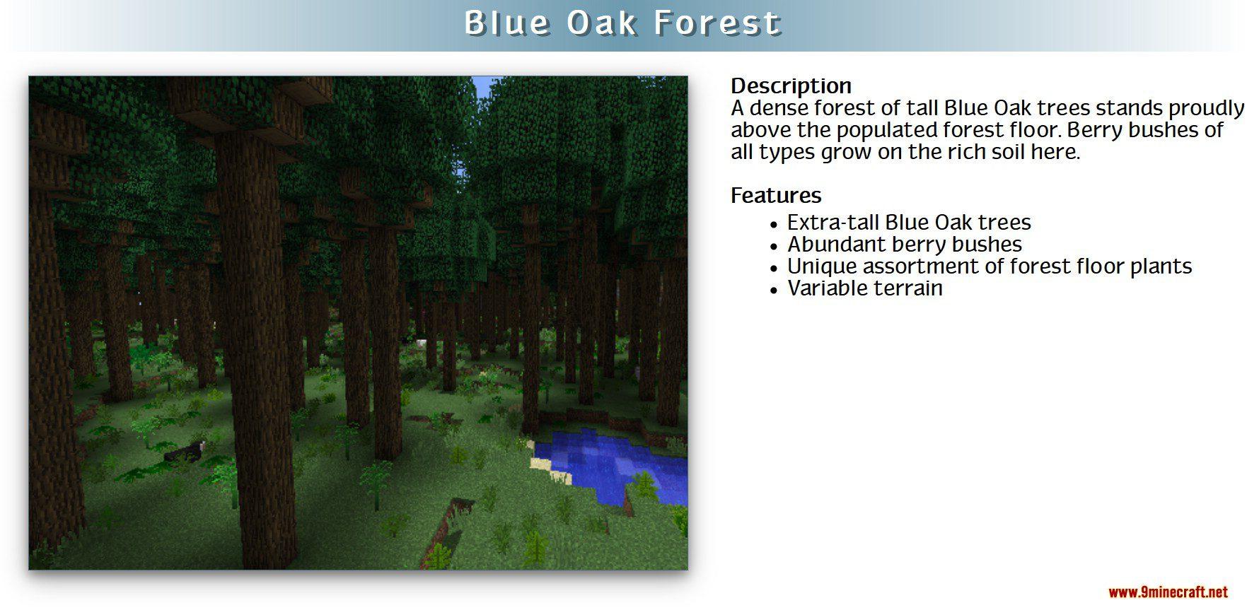 RealWorld Mod Screenshots 3