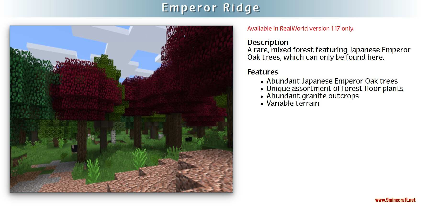RealWorld Mod Screenshots 6