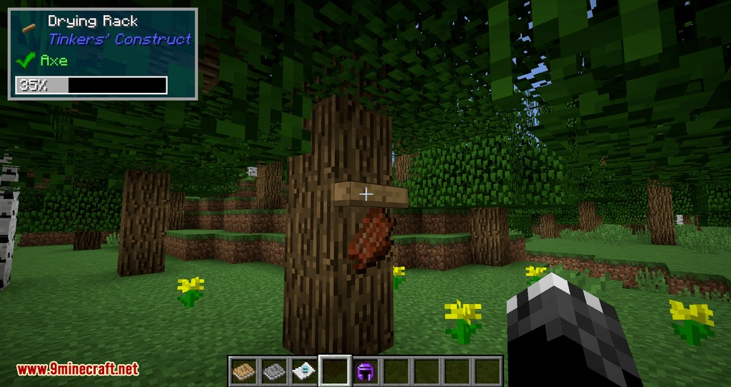 TOP Addons mod for minecraft 05