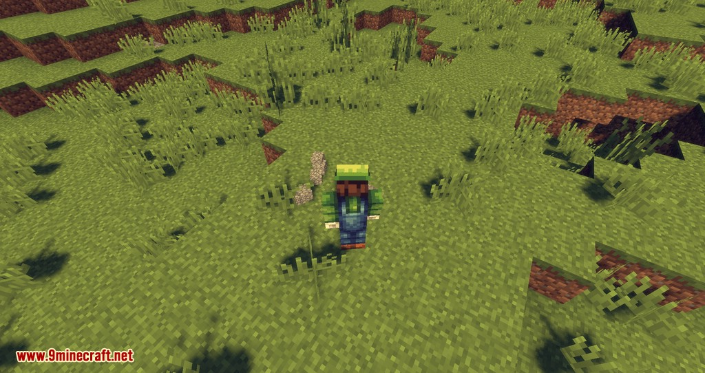 Dropt mod for minecraft 05