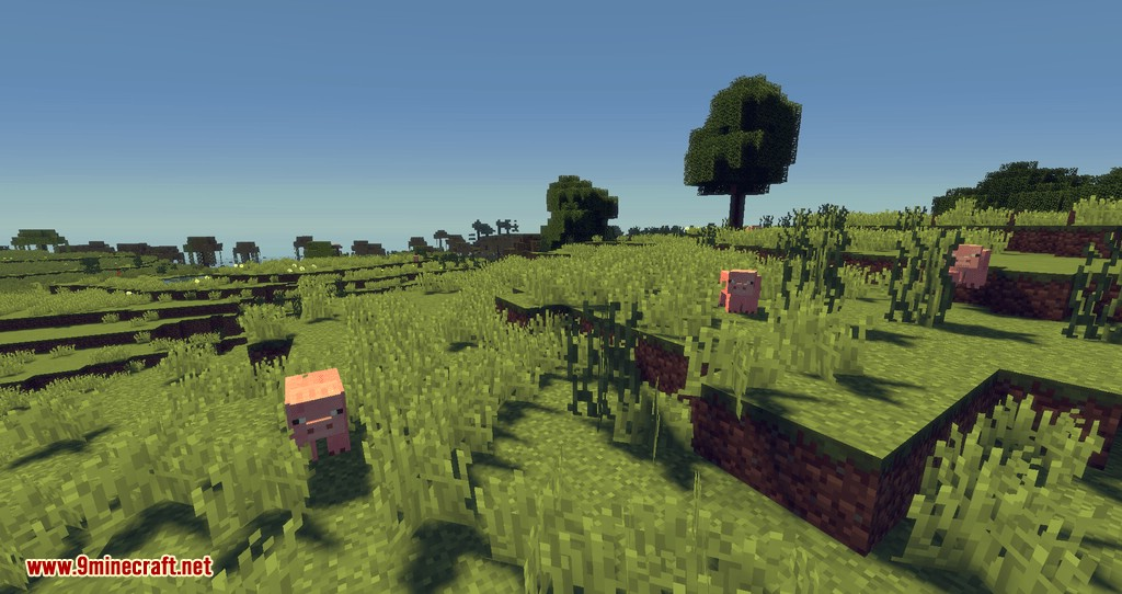 Dropt mod for minecraft 06