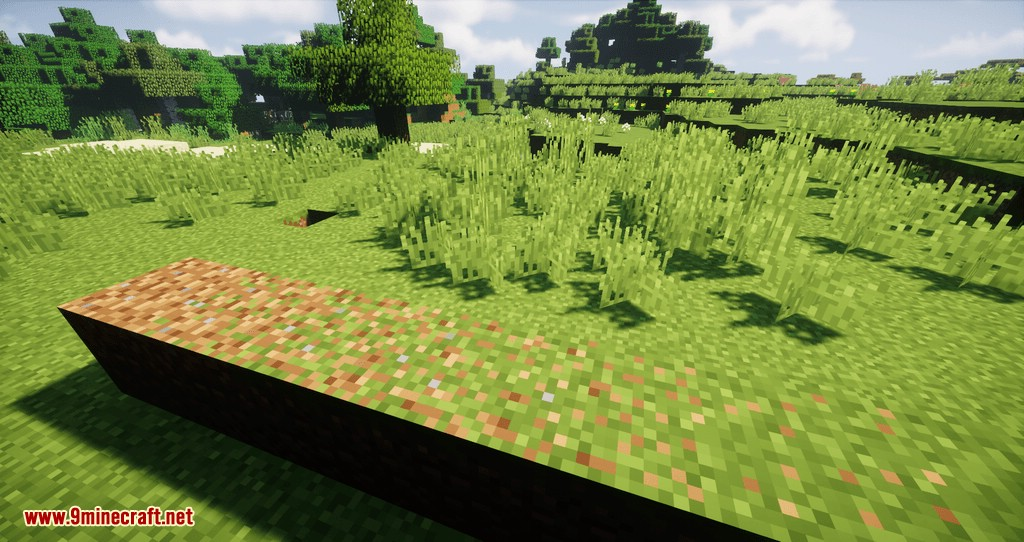 Desire Paths mod for minecraft 04