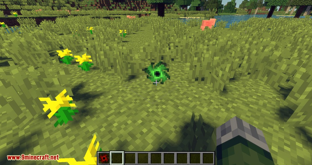 JAOPCASingularities mod for minecraft 10