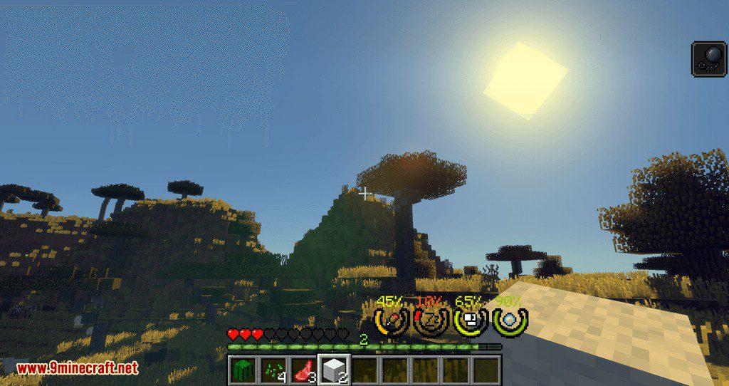 Real Survivor mod for minecraft 05
