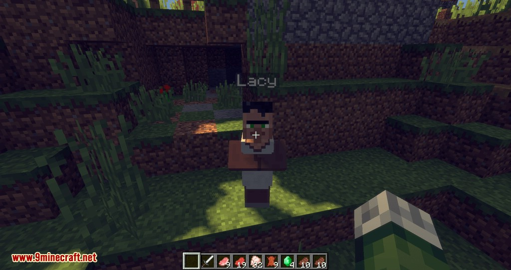 Improved Villagers mod for minecraft 08