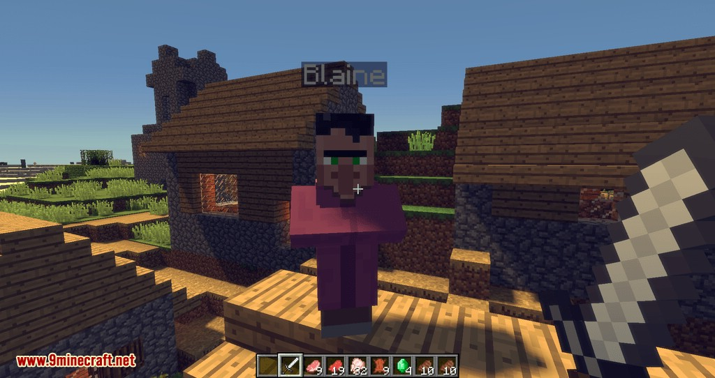 Improved Villagers mod for minecraft 10