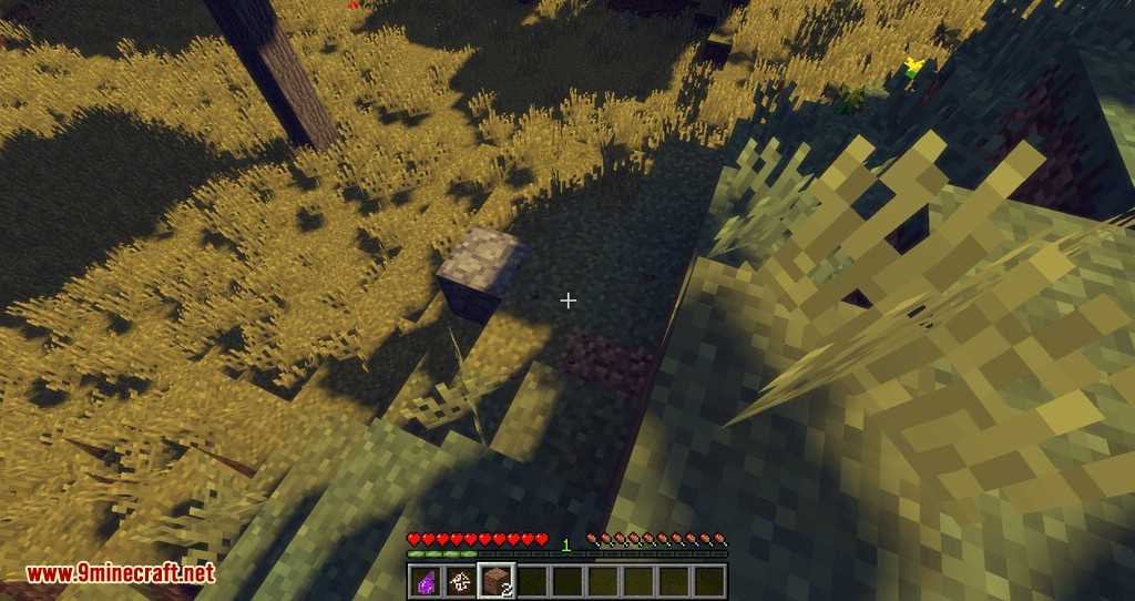 Patchwork mod for minecraft 17