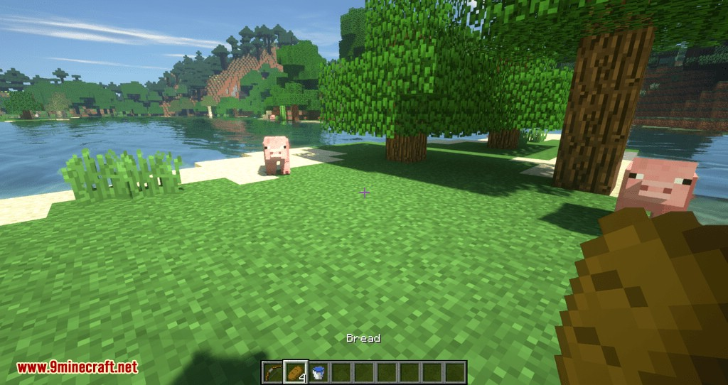 HotSwap mod for minecraft 06