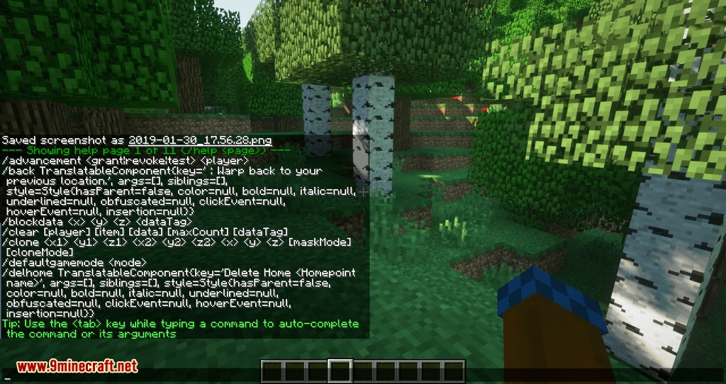 Mycommands mod for minecraft 04