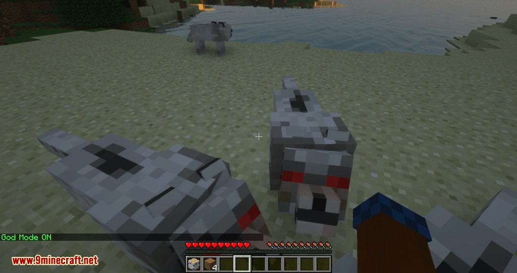Mycommands mod for minecraft 07