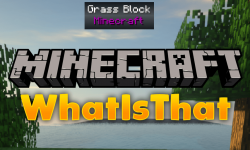 WIT mod for minecraft logo