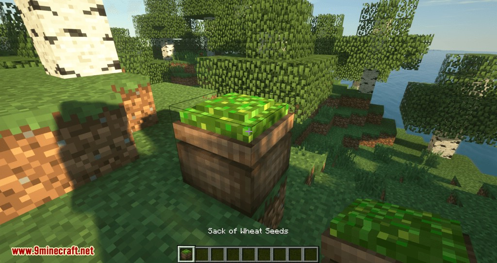 Compressed Items mod for minecraft 02
