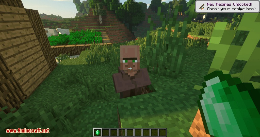 Following Villagers mod for minecraft 07