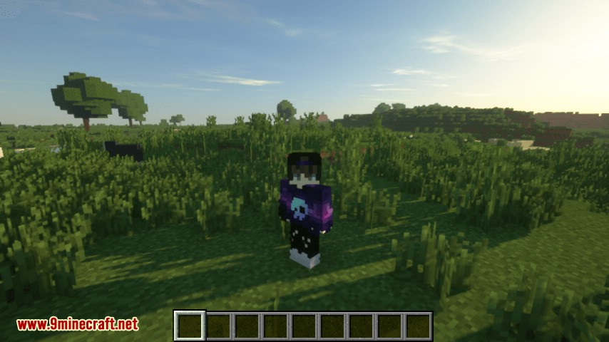 Offline Skins mod for minecraft 06