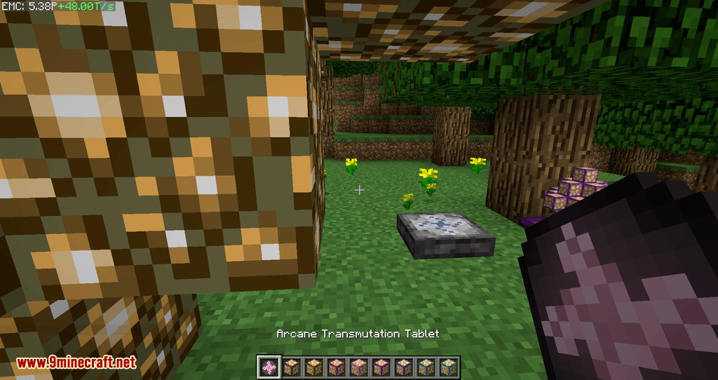 Project EX mod for minecraft 14