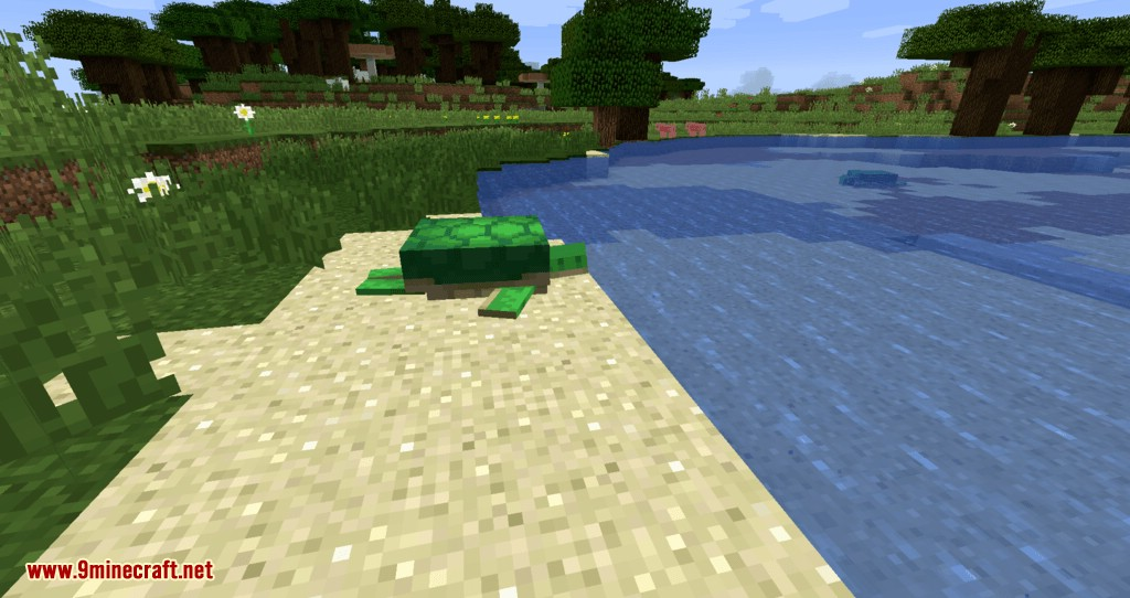 Turtle Shell Drop mod for minecraft 02