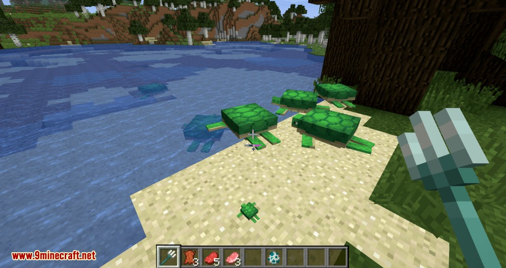 Turtle Shell Drop mod for minecraft 03