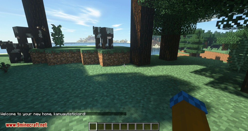 get back to home mod for minecraft 05